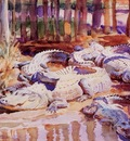 John Singer Sargent Muddy Alligators, De