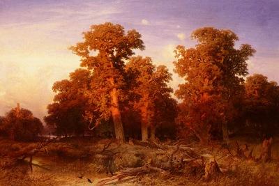 Schaeffer August Sunset In A Hungarian Forest