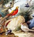 Schouman Aert Birds in landscape Sun