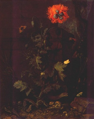 Van Schrieck Still Life With Poppy Insects And Reptiles 17th C