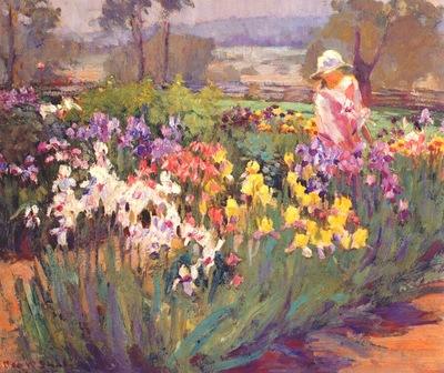 shulz,ada iris garden