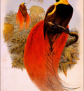 bs na William Hart Count Raggis Bird Of Paradise