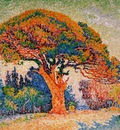 Signac Paul Pine trees in Saint Tropez