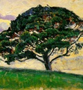 Signac The Large Pine, Saint Tropez, ca 1892 93, 19x27 cm, E