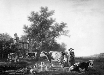Strij van Jacob Milking time Sun