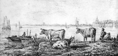 Strij van Abraham View on Dordrecht Sun