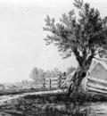 Strij van Jacob Landscape Sun