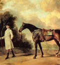 George Stubbs Horse and Rider, De