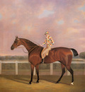 Tomson Clifton Memnon a Chestnut Racehorse With Jockey Up