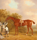 Tomson Clifton Mr Watts Altisidora Winner Of The 1813 St Ledger