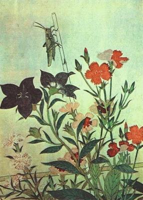 utamaro rice locust red dragonfly pinks chinese bell flowers