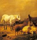 Verboeckhoven Eugene A Horse Sheep And Goat In A Landscape