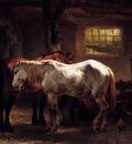 verschuur wouterus two horses a dog and caretaker sun