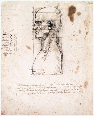 Leonardo da Vinci Male head in profile with proportions