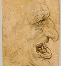 Grotesque Head Man in Profile to Right