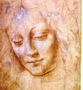Leonardo Head of a young woman, Accademia, Venice