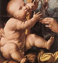 Leonardo da Vinci The Madonna of the Carnation detail2