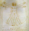 Leonardo da Vinci The Proportions of the Human Figur
