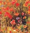 vonnoh poppies