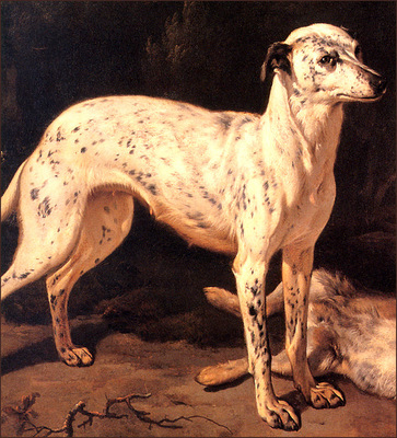 bs ahp Jean Baptist Weenix Dog Standing By A Dead Hare[detail]