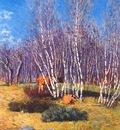 weir the birches