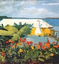 homer flower garden and bungalow, bermuda