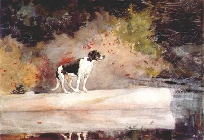 homer dog on a log