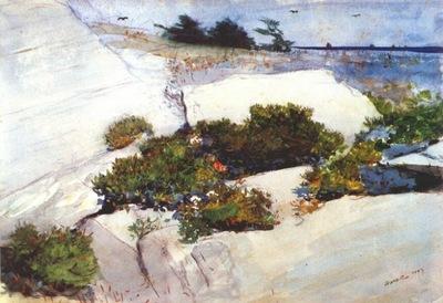 homer maine cliffs