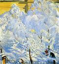 Kusodiev Boris Hoar frost Sun