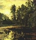serov overgrown pond domotkanovo