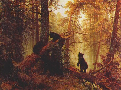 shishkin morning in a pine forest