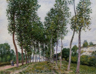 Lane of Poplars on the Banks of the Loing