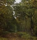 Avenue of Chestnut Trees near La Celle Saint Cloud