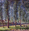 Lane of Poplars at Moret
