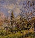 Orchard in Spring   By