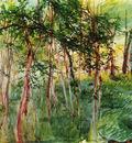 Alberi al Bois de Boulogne