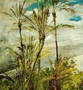dipinti murali della falconiera