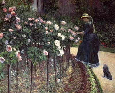roses garden at petit gennevilliers
