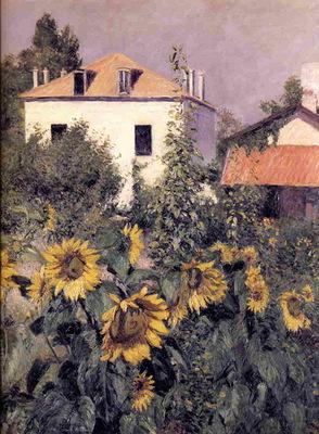 sunflowers garden at petit gennevilliers