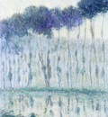 poplars on the banks of the eure