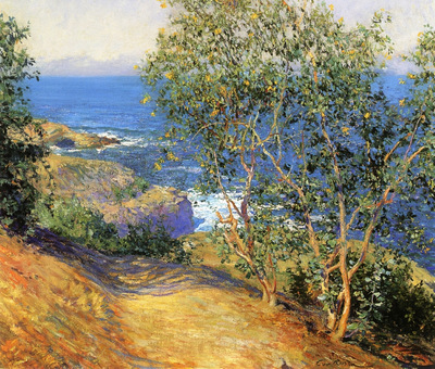 indian tobacco trees la jolla 1915