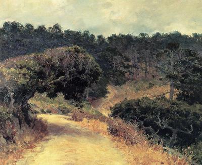 monterey forest