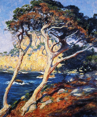point lobos trees