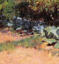 the cabbage patch 1890