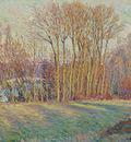 Poplars in Eragny