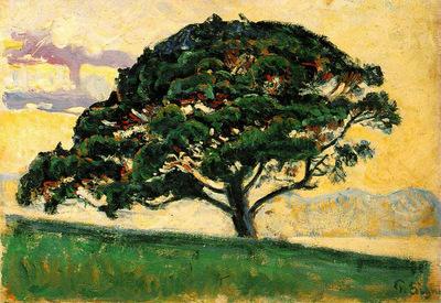 pine st tropez 1892