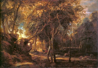 forest landscape at the sunrise