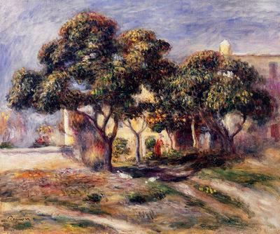 medlar trees cagnes