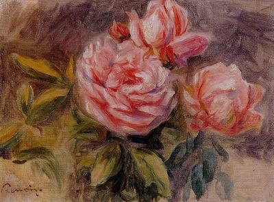 roses 1904