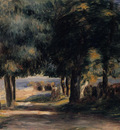pine wood on the cote dazur